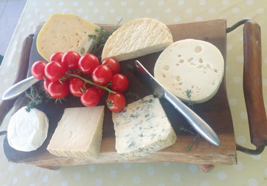 A homemade cheese plate