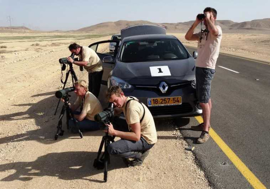 Birdwatchers Arava