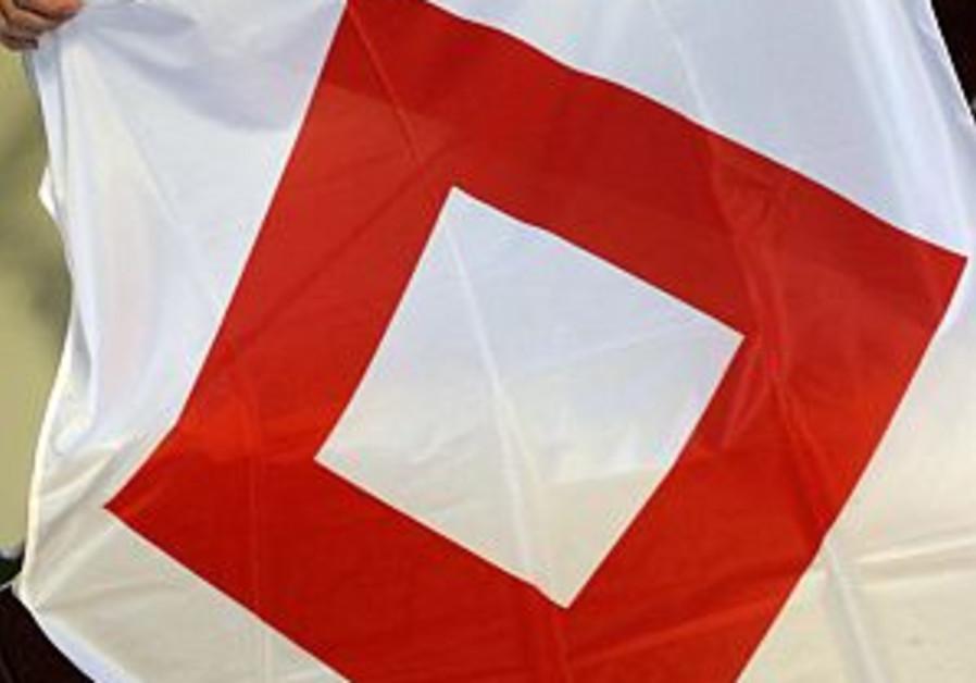 new red cross crystal symbol 298.88
