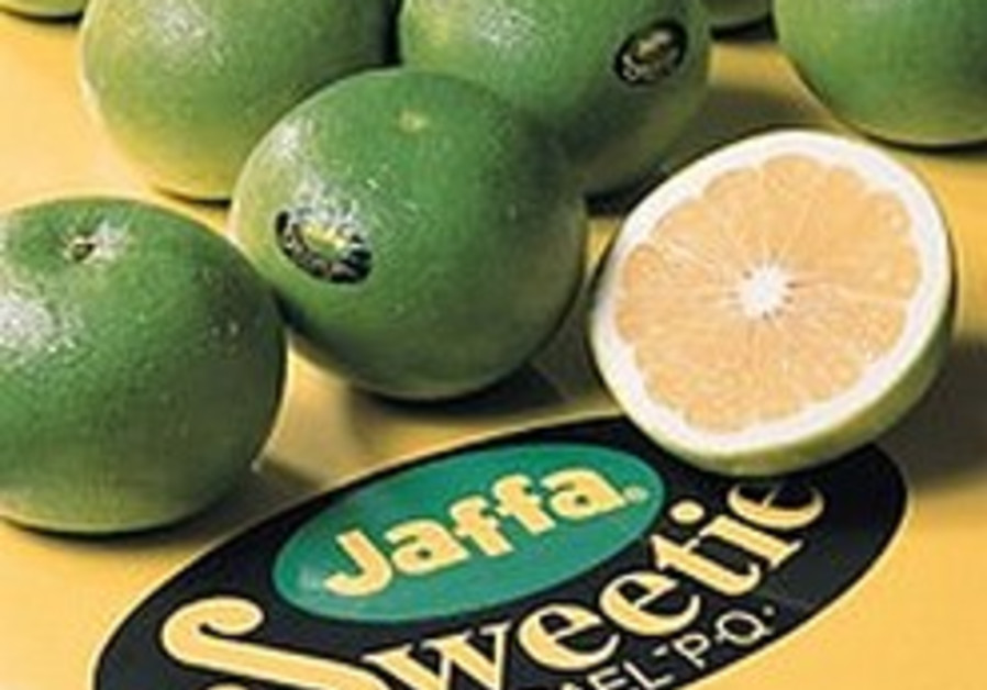 Chinese citrus fruit 'disgraces' Iran