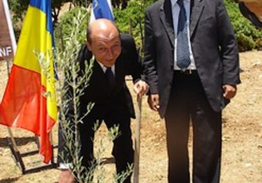 Rumanian President plants an olive tree in the Grove of Nations
