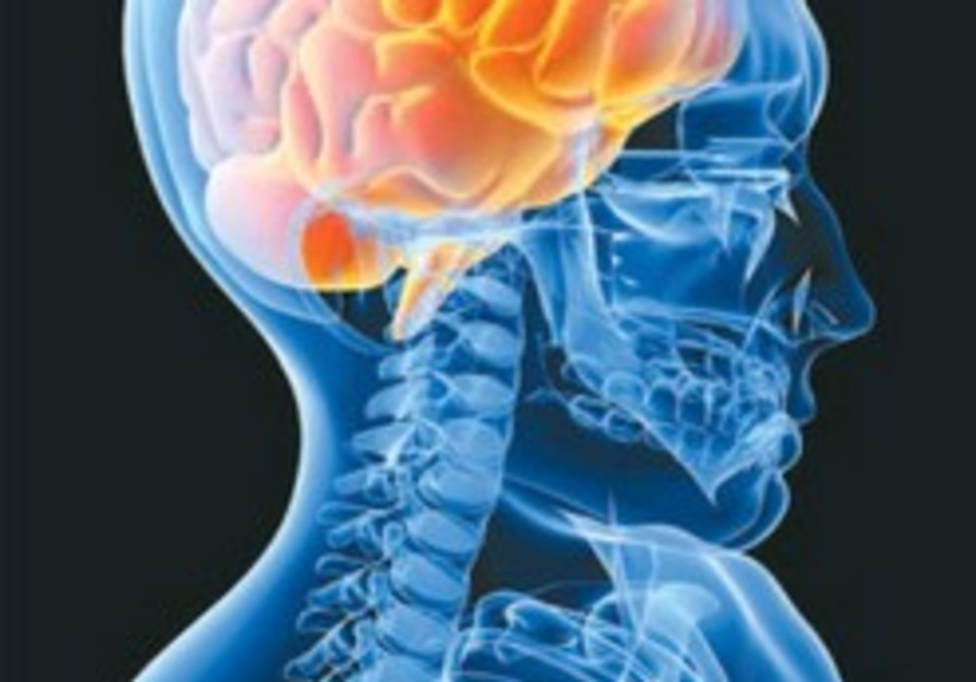 Magnetic stimulation shown to alleviate PTSD