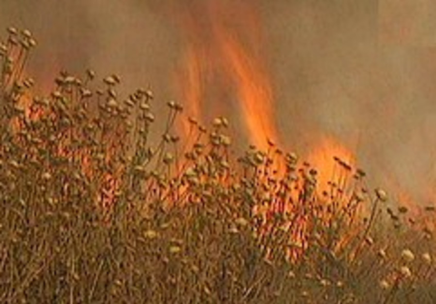 Arsonists blamed for wave of wildfiresin North