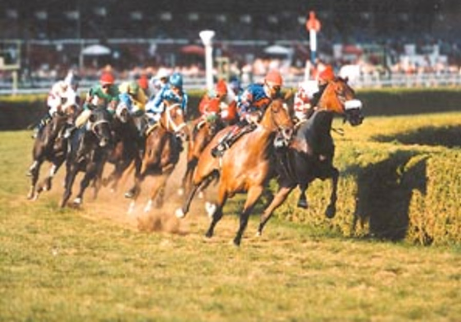 horse racing 88 298