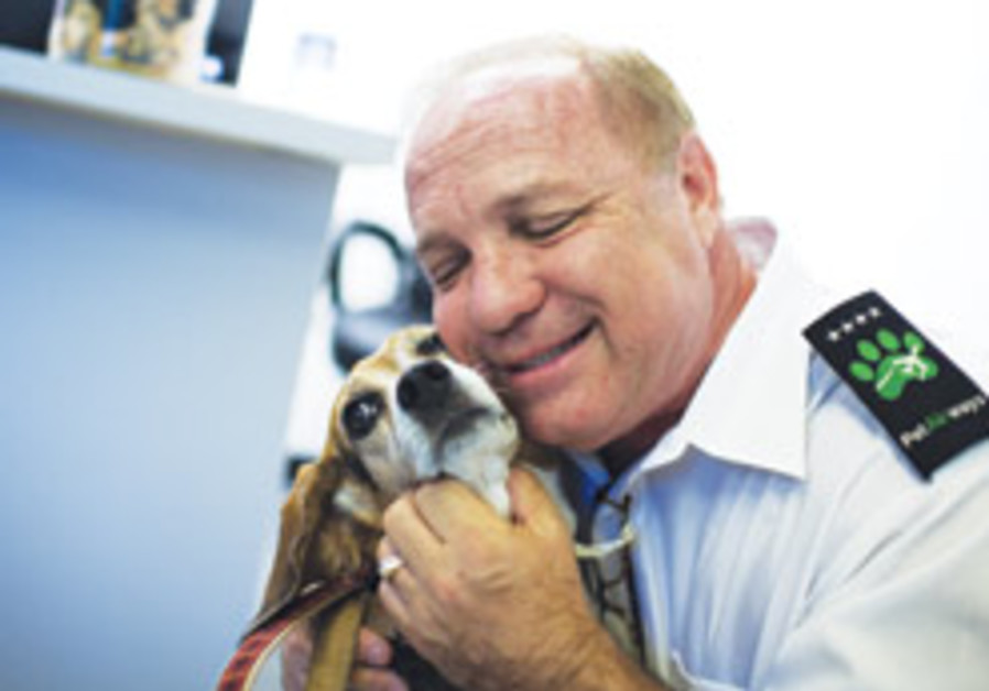 Paws up: All-pet airline hits the skies