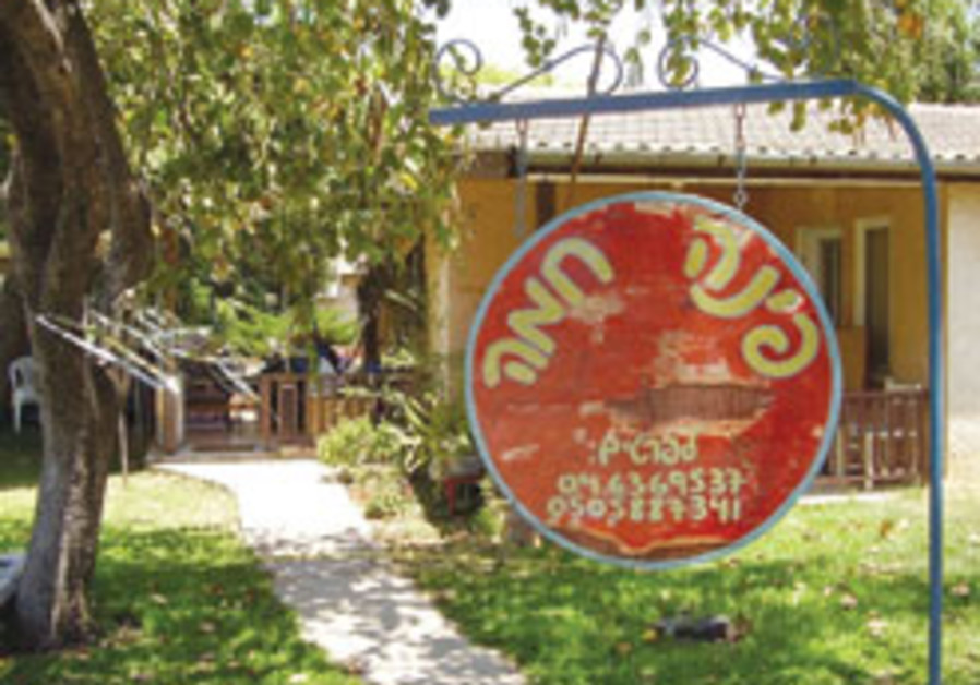 Hefer Valley offers art and tours