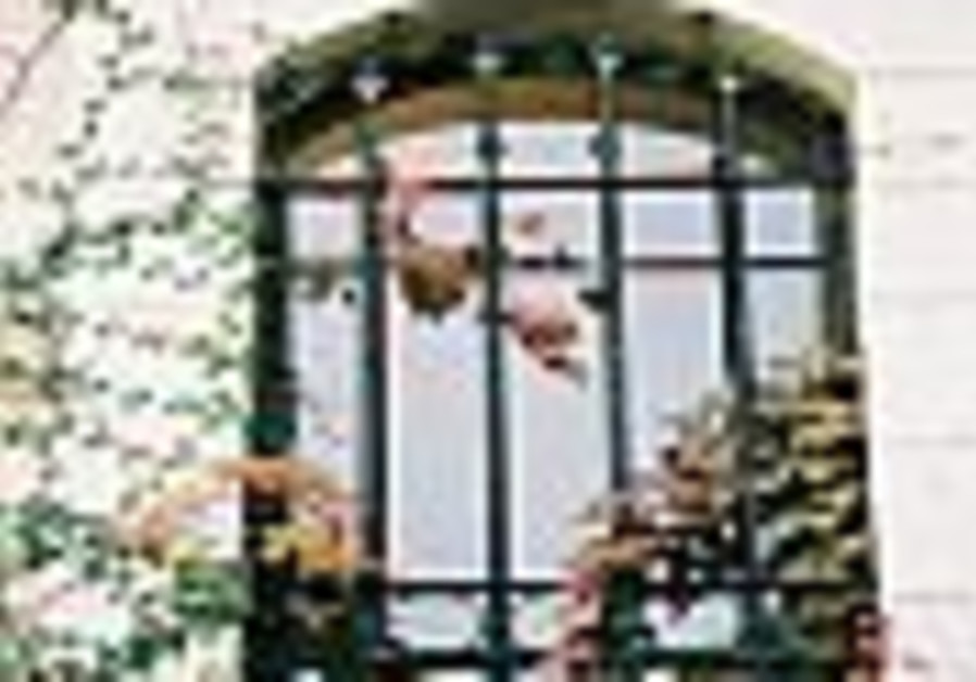 diaries window with flowers 88