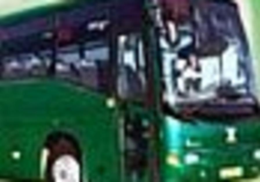 egged bus isolated 88