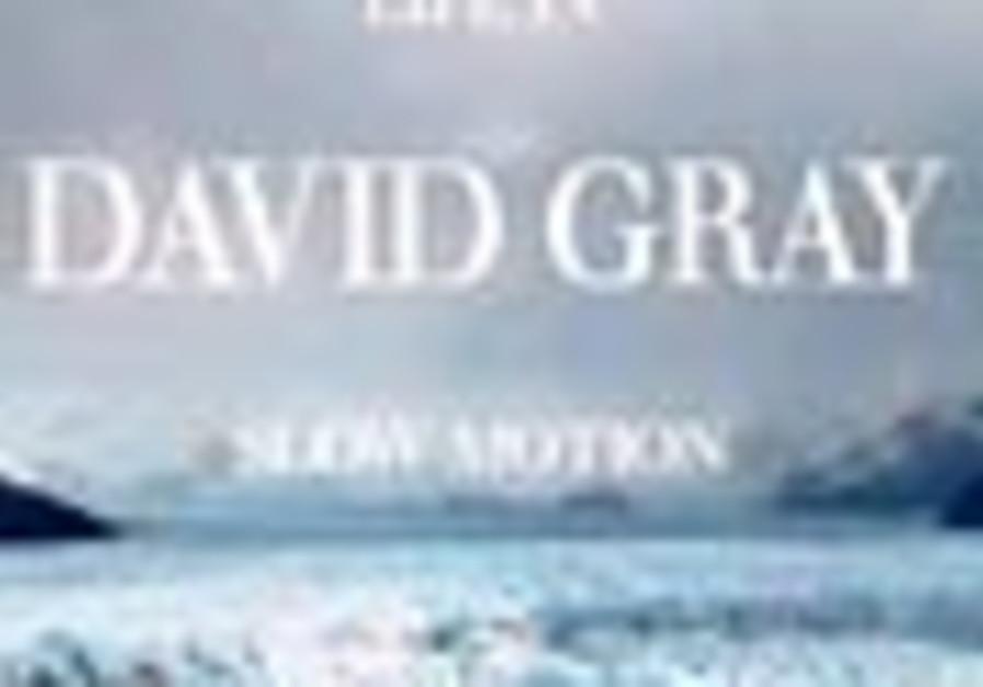 david gray disk 88