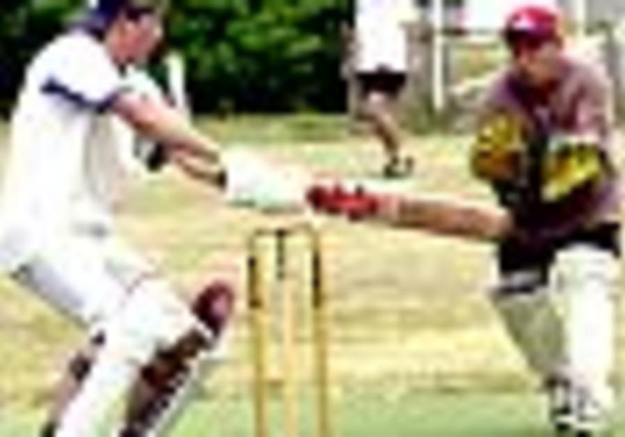 cricket 88