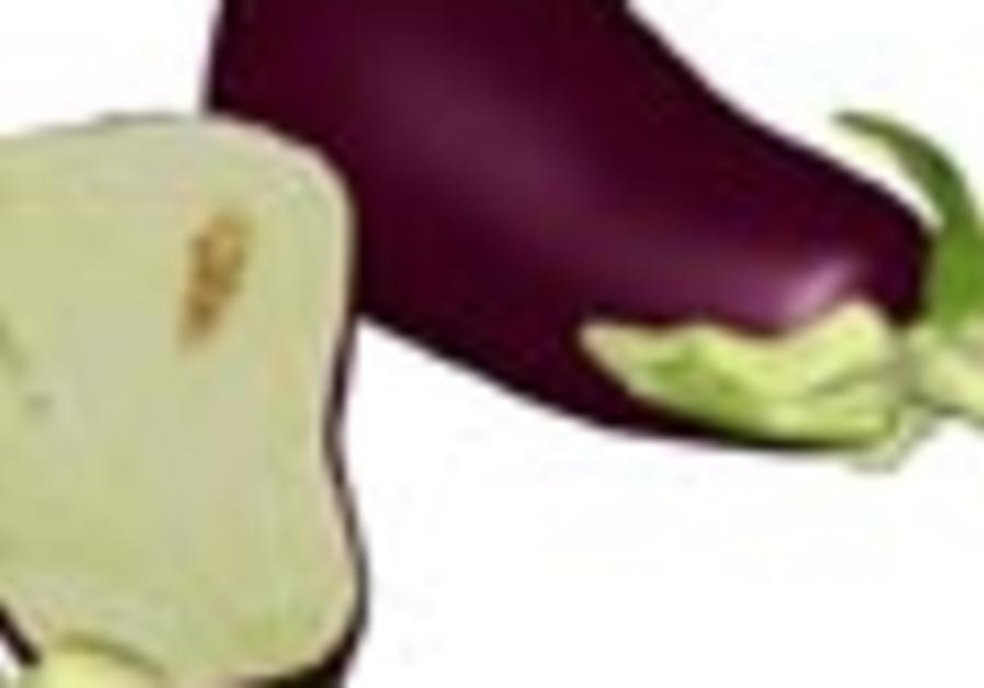 eggplant 88
