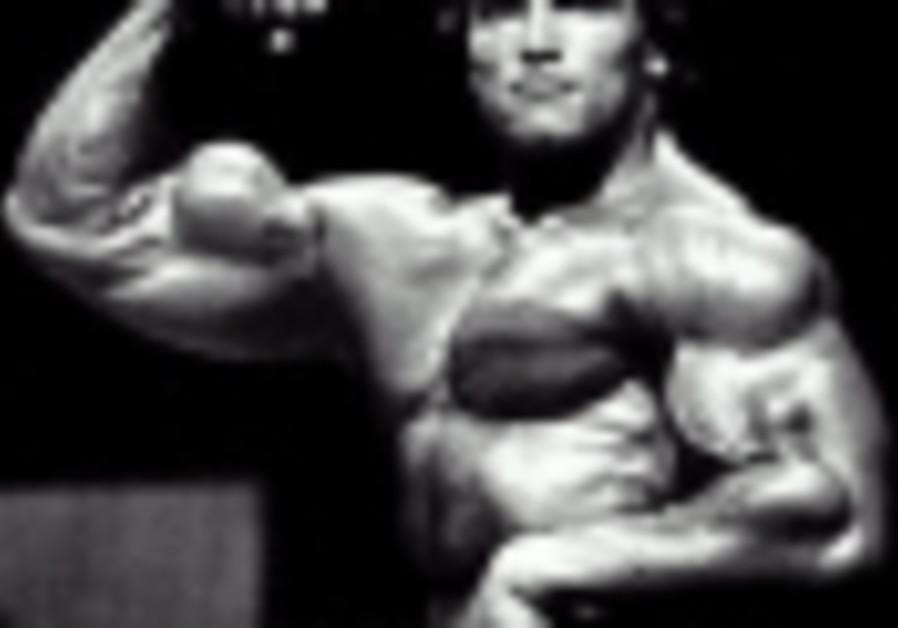 bodybuilding arnold schwarzenegger 88