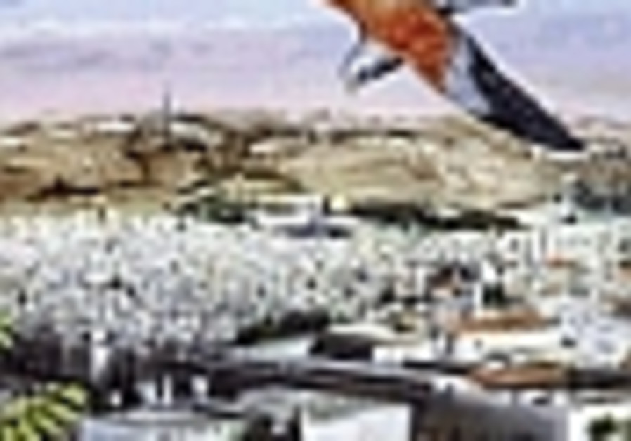 Rare bird is sighted in Jerusalem