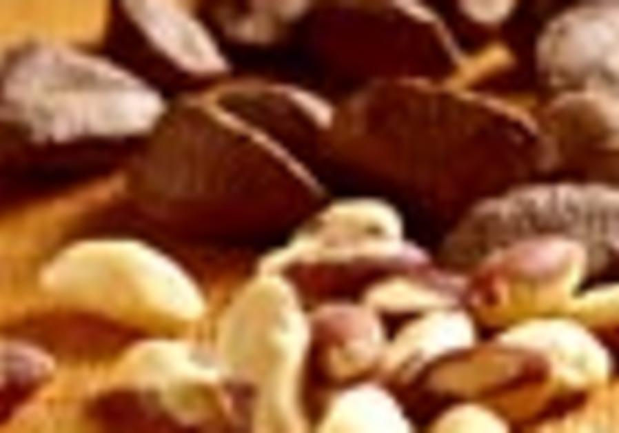 nuts 88