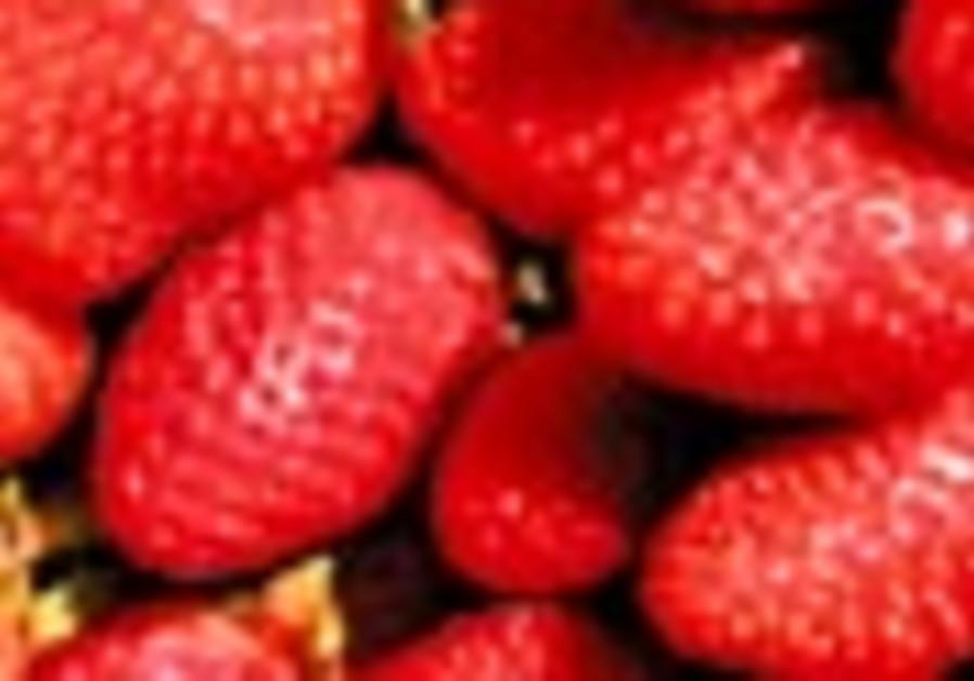 strawberries 88