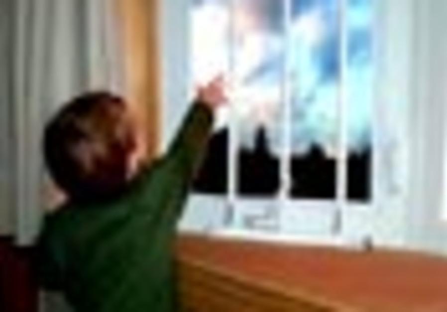 window bars 88