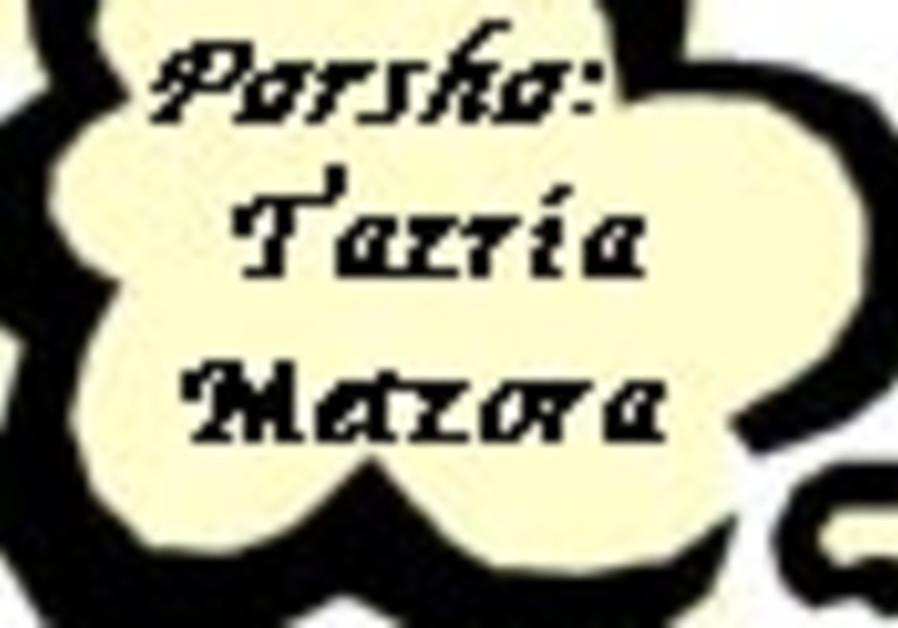 tazria metzora 88