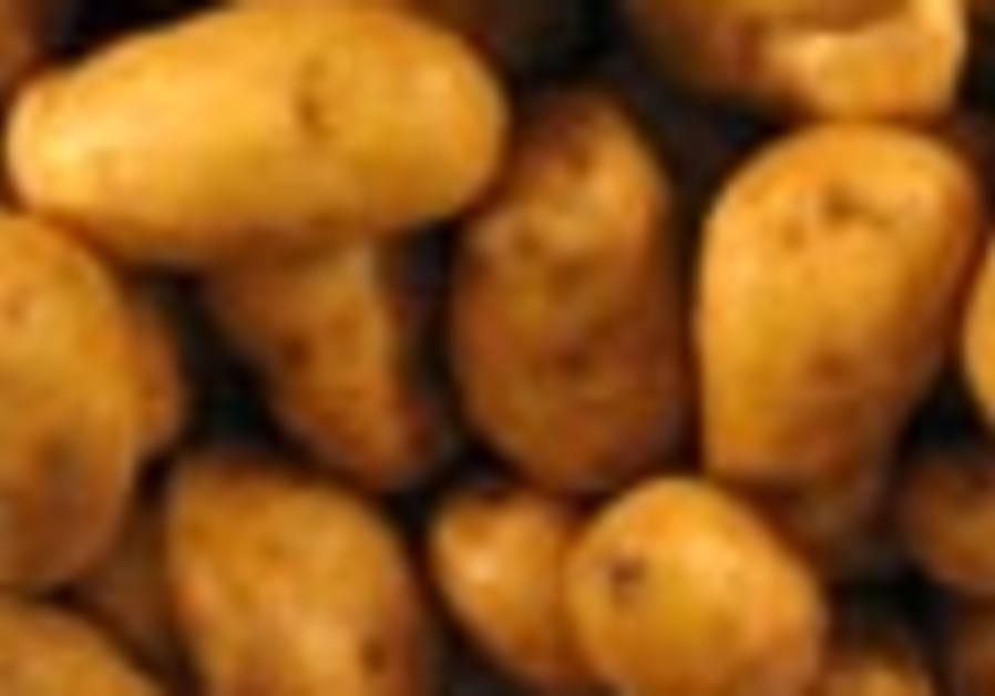 potatoes 88