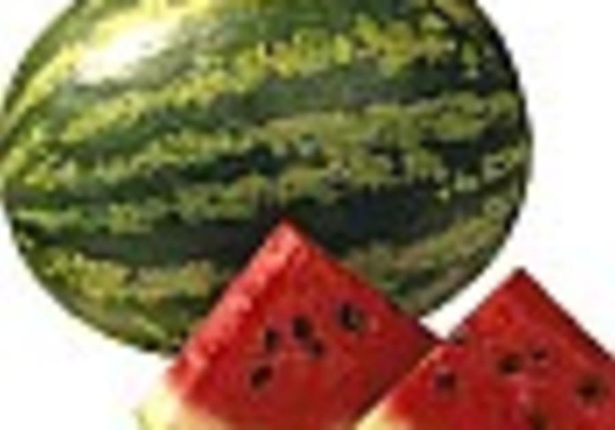 Research: Watermelon yields Viagra-like effects