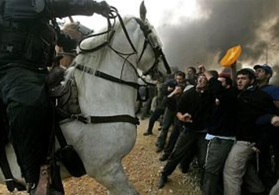 amona horses 298 ap