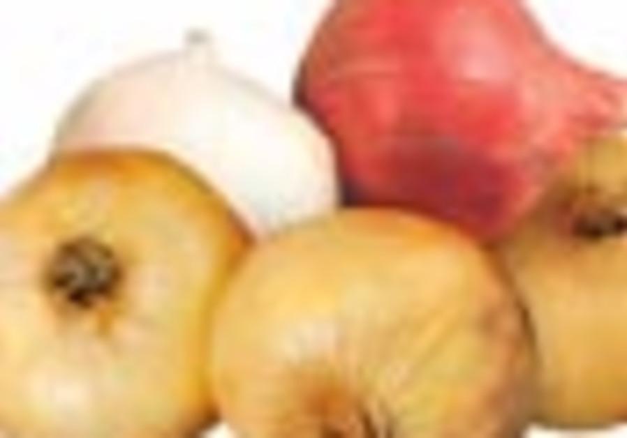 onions 88