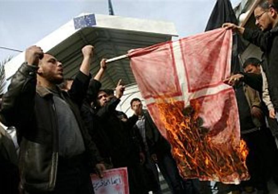 pals burn danish flag 298 and 88