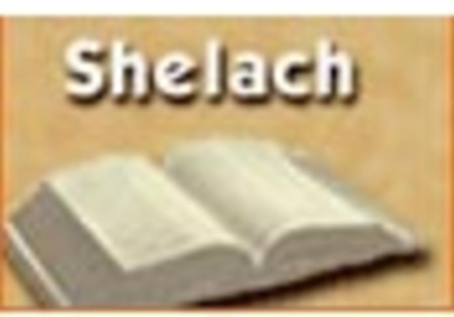 parsha shelach 88