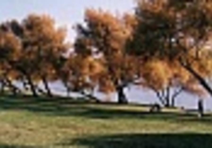 Tulkarm, Emek Hefer explore Alexander River 'Peace Park'