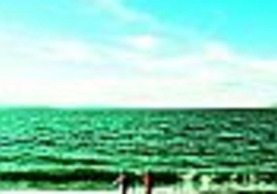 Seaborne ecology