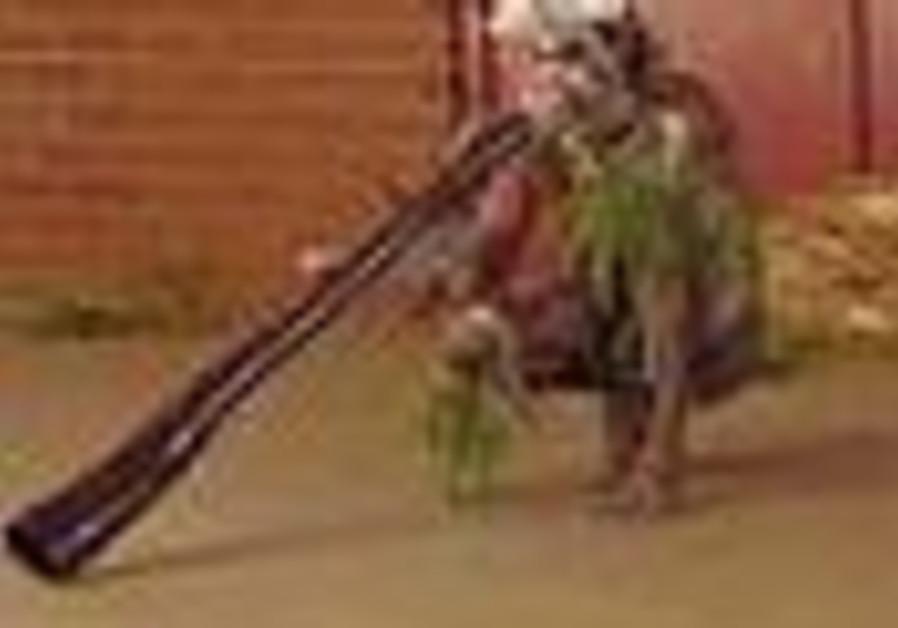 Do didgeridoo do