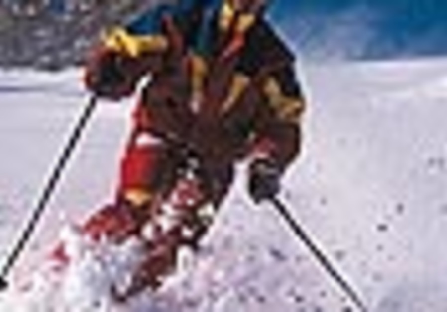 ski feature 88