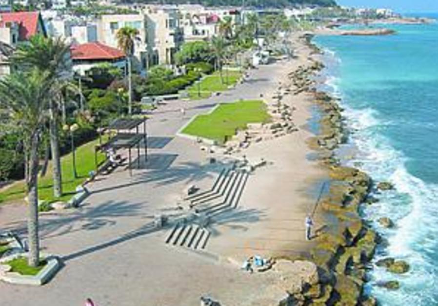 in haifa