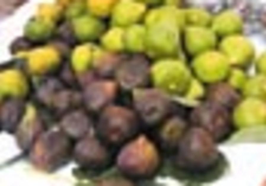 figs 88