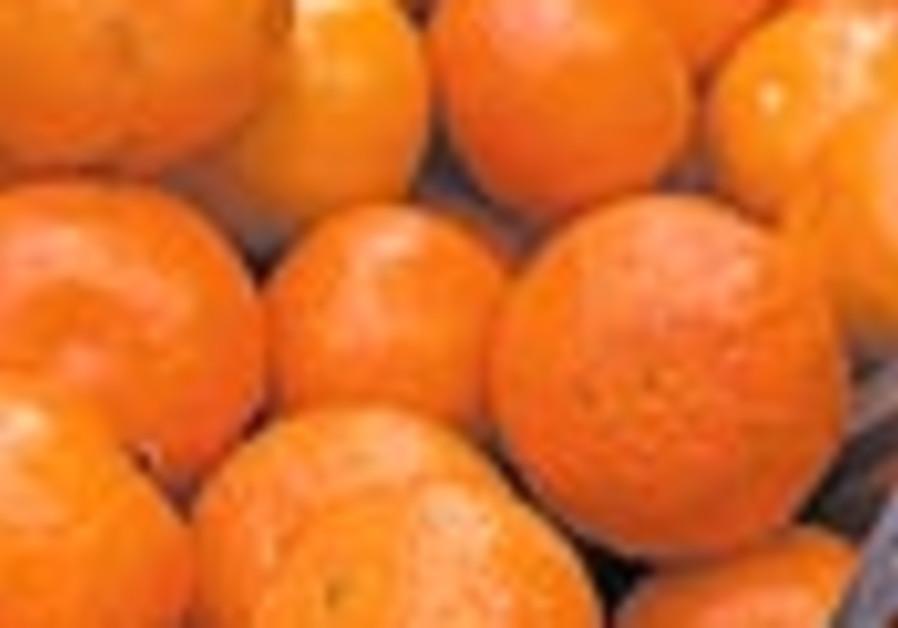 mandarins 88