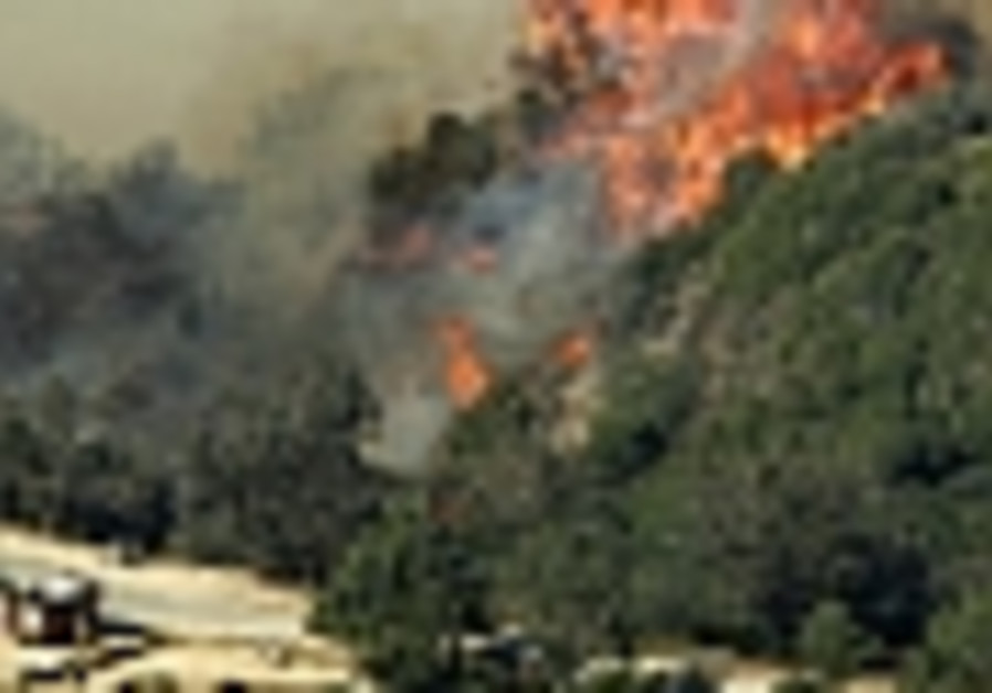Firefighters putting out massive Griffith Park blaze