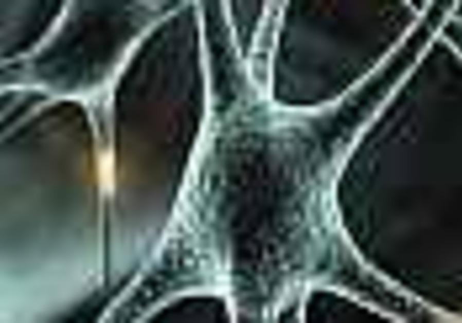 Weizmann creates artificial nerve networks