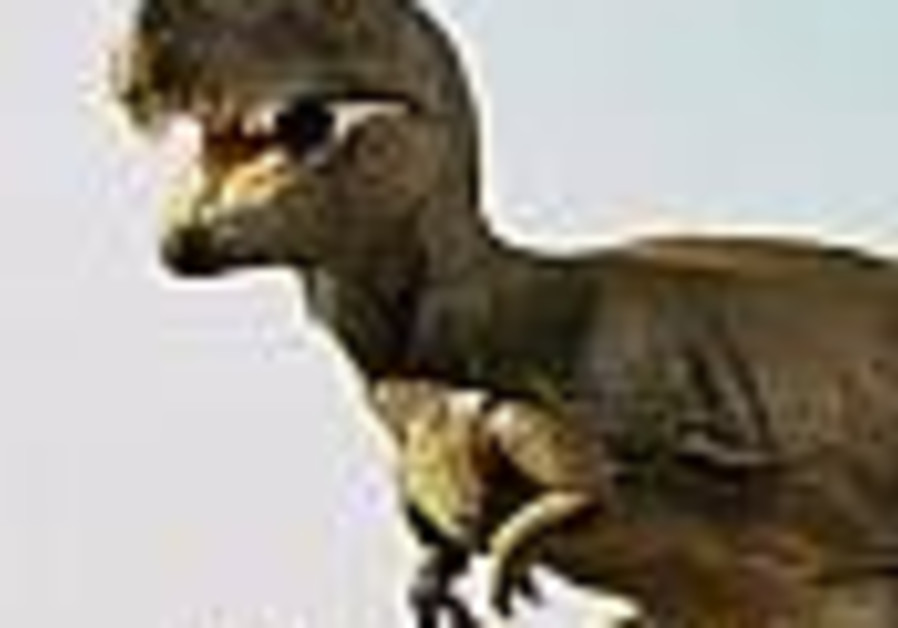 Remains of giant dinosaur found in China
