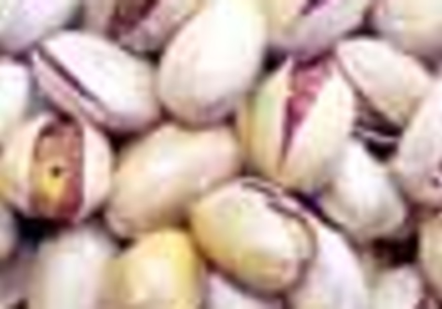 pistachio 88