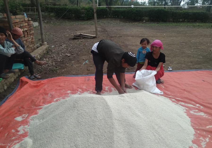 Sebuah gundukan beras sedang disiapkan untuk dibagikan. Makanan pokok Bnei Menashe, keluarga juga menerima lentil, minyak goreng, dan gula