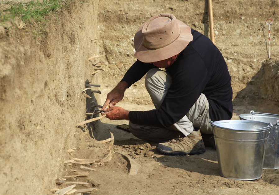 Excavation work at f 'Genghis Khan' Wall in Mongolia. (Hebrew University of Jerusalem)