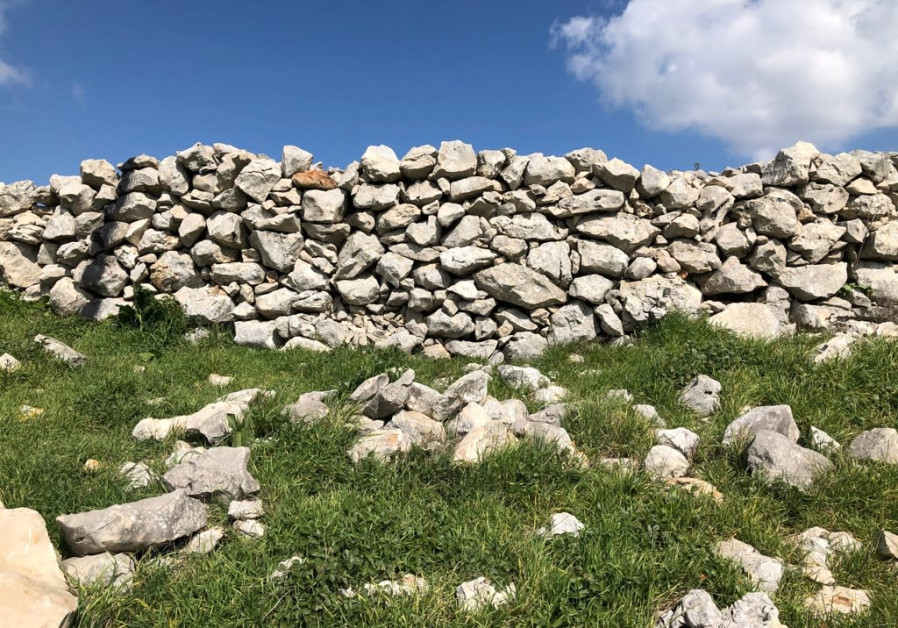 Joshau's altar on Mt. Ebal, a close up of the biblical era wall or terrace. Two sections of this wall were destroyed/ Tovah Lazaroff