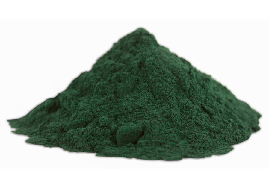 Spirulina (Wikimedia Commons)