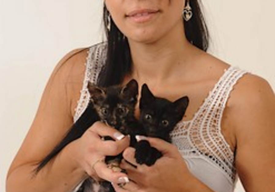 rescued cats 248.88