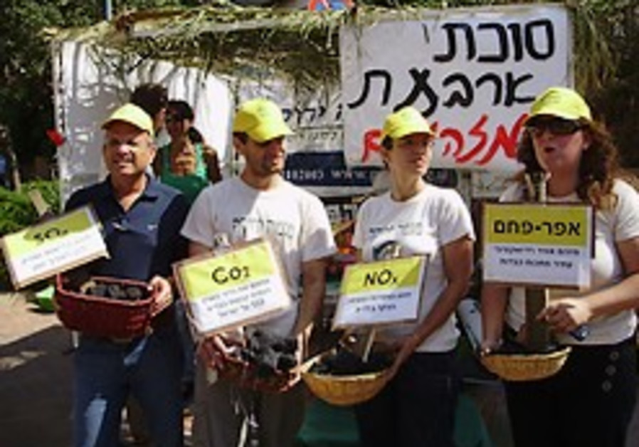 environment coal plant protest 248 88