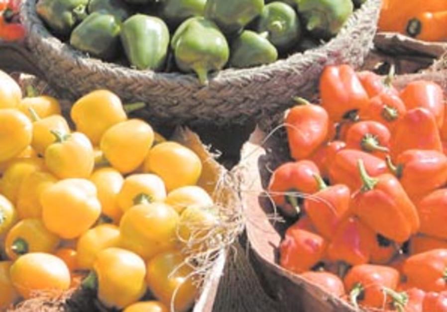organic vegetables 88 298