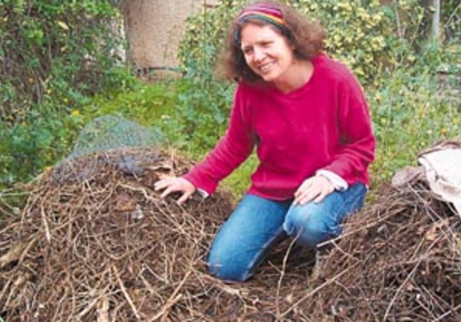 compost queen 88 298
