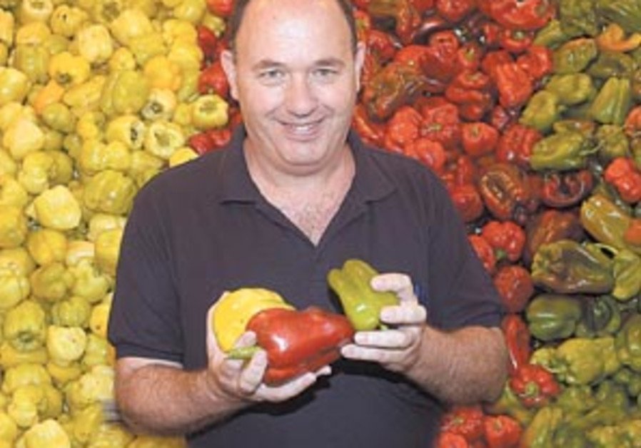hybrid peppers 88 298