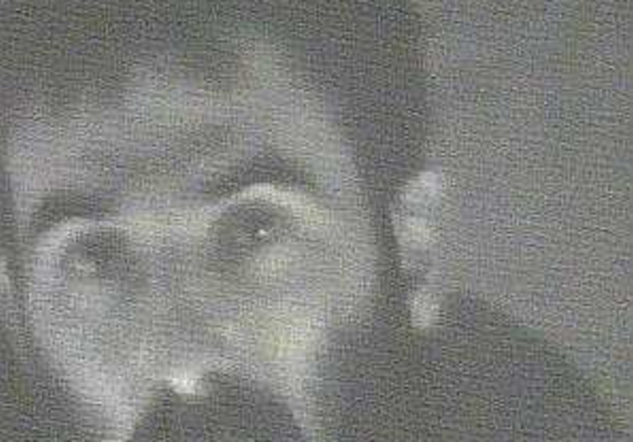 Footage released of Har Dov abduction