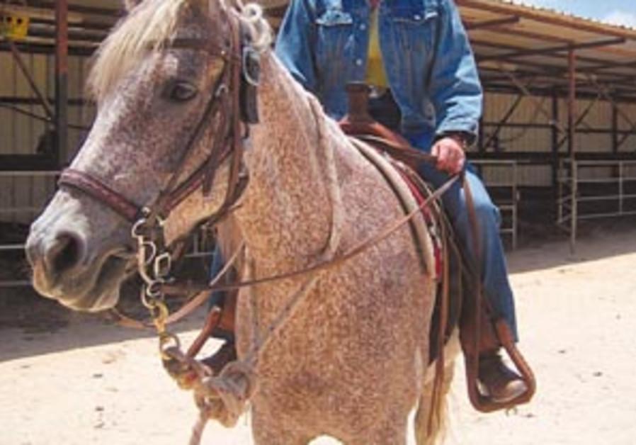 danielle horse 88 298