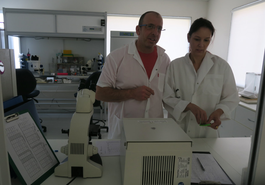 Saar Yavin and Adaya Aroyo from Maxximilk.